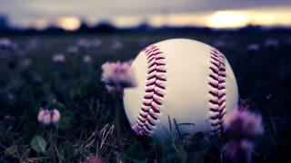 丸正ビッケ的な想い…来シーズンの【ベースボール♪】
